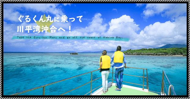 石垣島・川平湾沖合でマンタとウミガメを見よう