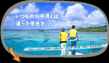 石垣島・川平湾プレミアムクルージング