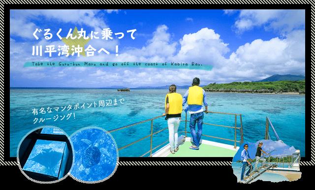 石垣島・川平湾プレミアムクルージングマンタに会える!